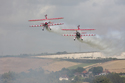 Team Guinot Wingwalkers at Shoreham Air Show 2009